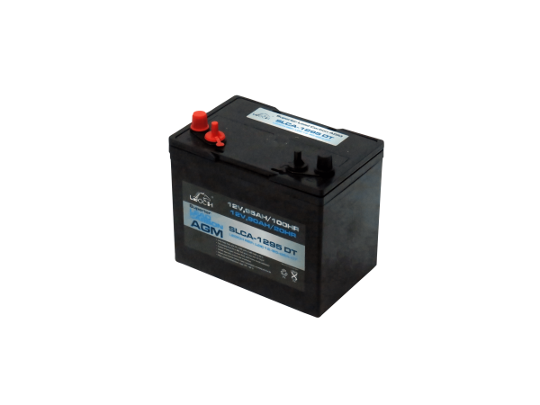 12V 90AH Leoch AGM Superior Lead Carbon Deep Cycle Battery (SLCA-1295 DT)-0
