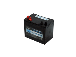 6V Leoch 230AH AGM Superior Lead Carbon AGM Deep Cycle Battery (SLCA-6225-DT) (T105)-0
